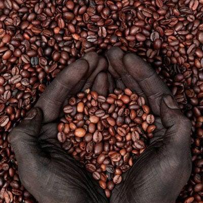 Премиум и специално кафе