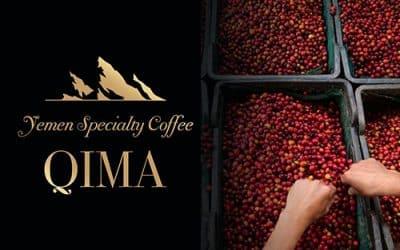 ЗА ПЪРВИ ПЪТ В БЪЛГАРИЯ НЕПОЗНАТ ДО СЕГА ПОДВИД на Coffea arabica